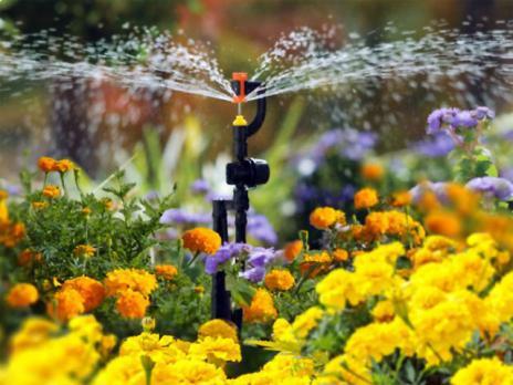 Дождевой полив «Расцветайка», рисунок 2