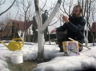 Работы по подготовке участка к дачному сезону в марте