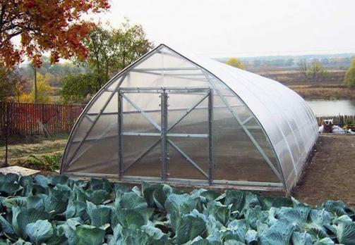Теплица «Фермер 5», фото 2