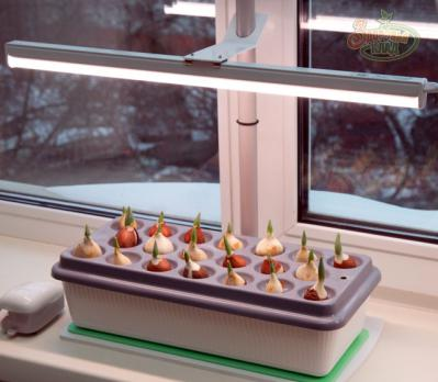 Фитосветильник «Растущий-16», фото 4